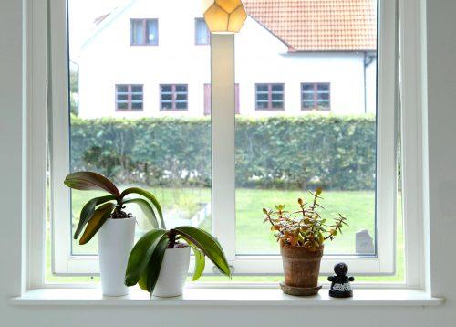 Fönsterbyte i Harplinge